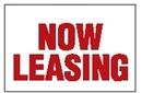 Blank Metallic Fringe Pennants W/ Pre-Printed Message Panel (Now Leasing), 30' L