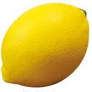 Custom Lemon Stress Reliever, 2