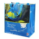 Custom Full Color Laminated Non-woven Tote Bag, 14