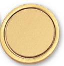 Blank Gold Pin w/Pin Back (1