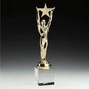 Custom Star Achievement 24K Gold Plated Award w/ Optical Crystal Base (14 3/4