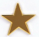 Custom Gold Star Stock Cast Pin