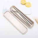 Custom Stainless Steel Straw with Brush Kit With Carry Case, 8.5