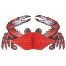 Custom Tissue Crab, 11