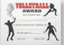 Custom Stock Certificate (Volleyball)
