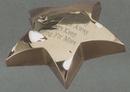 Custom Cast Metal Star Paperweight, 4
