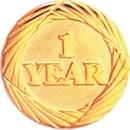 Custom Service Lapel Pin 1 Year