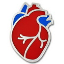 Custom Human Heart Lapel Pin, 1
