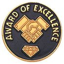 Blank Epoxy Enameled Scholastic Award Pin (Award of Excellence), 7/8