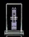 Custom Cosmopolita Award (13 1/2