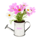 Custom Watering Can Planter Kit, 4 1/2