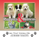 Custom 2101 Puppies & Kittens Wall Calendar - Stapled, Offset Printing