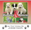Custom 210 Puppies & Kittens Wall Calendar - Spiral, Offset Printing