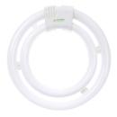 Sunlite 05745-SU FC40/2C/41K Fluorescent 40W 2C Circline Ceiling Lights, 4100K Cool White Light, GU10Q Base