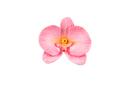 Silikomart 71.938.86.0096 Slk938 - Sugarflex Orchid Petal