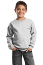 Port & Company - Youth Crewneck Sweatshirt. PC90Y.