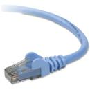 Belkin Cat6 Patch Cable, BLKA3L98010BLUS