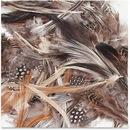 ChenilleKraft Natural Feathers