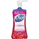 Dial Complete Antioxidants Hand Wash, DIA03016