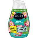 Renuzit After The Rain Air Freshener, DIA03663
