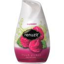 Dial Renuzit Aroma Raspberry Air Freshener