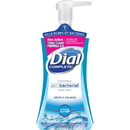 Dial Complete Spring Water Foaming Soap, DIA05401