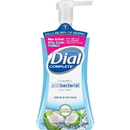 Dial Complete Coconut Water Foam Hand Wash, DIA09315