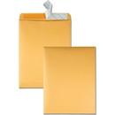 Quality Park Redi-Strip Envelope, Catalog - #13 1/2 (10