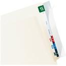 Tabbies Wrap Around Folder End Tabs, 100 / Pack - Clear Tab