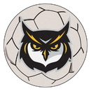 Fanmats 4145 Kennesaw State Soccer Ball 27