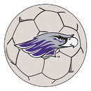 Fanmats 588 Wisconsin-Whitewater Soccer Ball 27