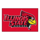 Fanmats 60 Illinois State Starter Rug 19