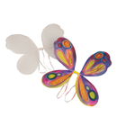 Color-Me Butterfly Wings