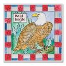 Bald Eagle Paintings