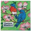 S&S Worldwide Eastern Bluebird Paintings