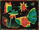 Multicolor Scratch-Art Paper, 8-1/2