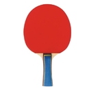 S&S Worldwide Pro Table Tennis Paddle
