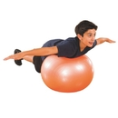 S&S Worldwide Exercise and Therapy Balls