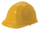 Safety Flag Hard Hats