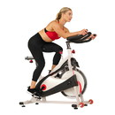 Sunny Health & Fitness SF-B1509  40Lb Flywheel Belt Drive Indoor Cycle Bike W/ Clipped Pedals