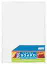 Pro Art Canvas Board