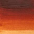 Winsor & Newton Winton Oil Color 37Ml