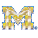 Siskiyou Buckle CABD36 Michigan Wolverines Bling Decal