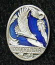 Siskiyou Buckle PN2211E Collector Pin - Montana Eagle