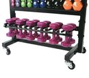 VTX MDR-ACCE Lockable Accessory Rack for 6 pairs of 12 or 15 lbs Vinyl or Neoprene Dumbbells