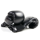 Tiger Claw Kick Boxing Gloves - New and improved design
