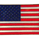 Tiger Claw USA Flag Pin