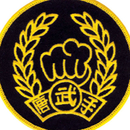 Tiger Claw Tang Soo Do Patch (4