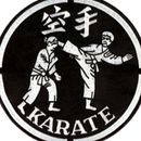 Tiger Claw Karate Jacket Patch (8