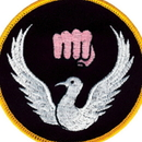 Tiger Claw Karate Dove Patch (3 1/2